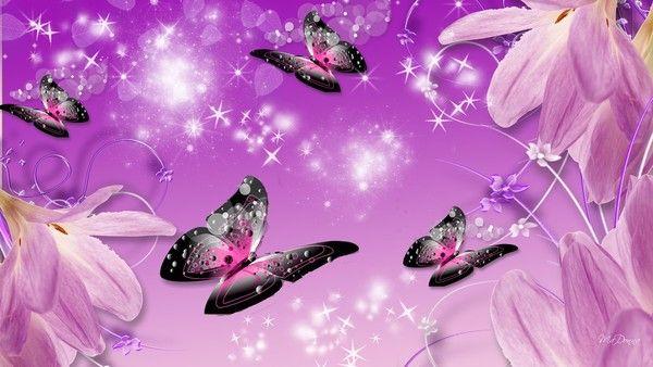 fleur papillon vector